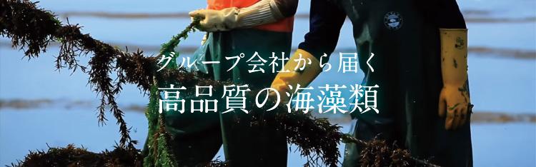グループ会社から届く高品質の海藻類